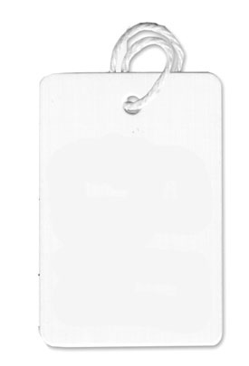Large Strung Blank White Tag